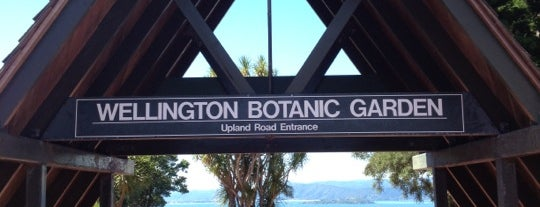 Wellington Botanic Garden is one of The coolest little capital in the world.