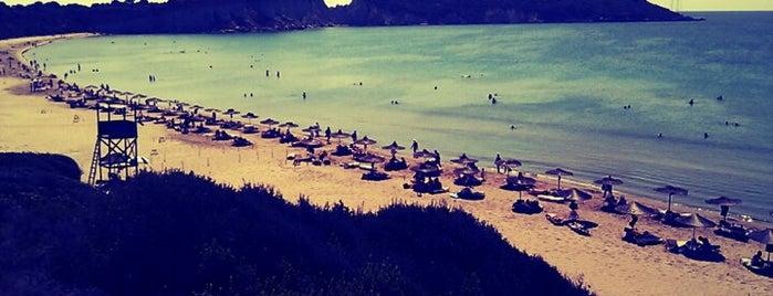 Gerakas Beach is one of Best beaches in Zakynthos.