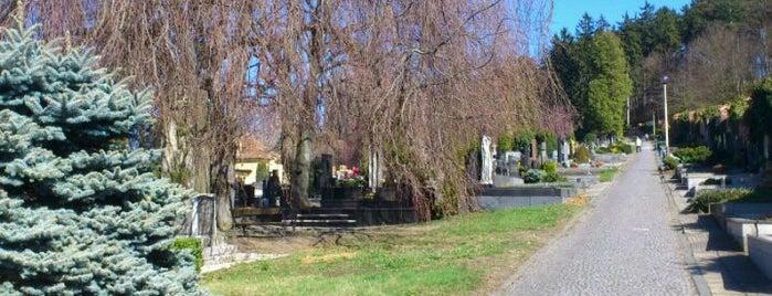 Hřbitov is one of Místa v Napajedlích.