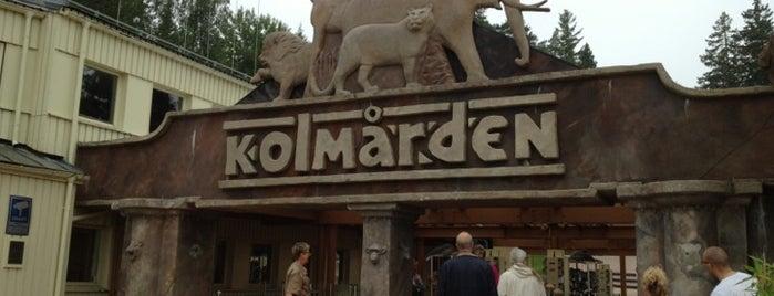 Kolmårdens Djurpark is one of Attractions to Visit.