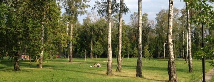 Черкизовский парк is one of Сады и парки Москвы.