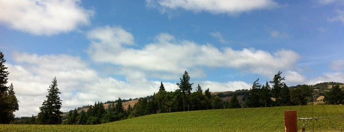 Toulouse Vineyards is one of MENDOCINO, CA.