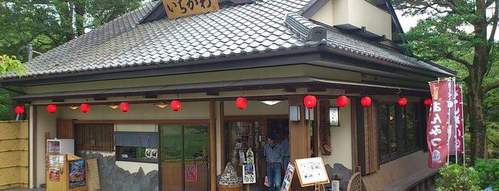 岡崎公園 隠居廊跡 いちかわ is one of グレート家康公「葵」武将隊.