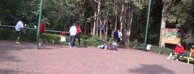 Bosque de Tlalpan is one of Algunos lugares....