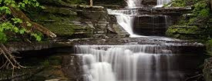 Buttermilk Falls State Park is one of Favorite Great Outdoors.