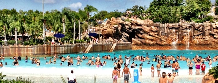 Disney's Typhoon Lagoon is one of 50 Best Swimming Pools in the World.