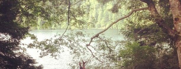 Moran State Park is one of Orcas- San Juan Islands, WA.