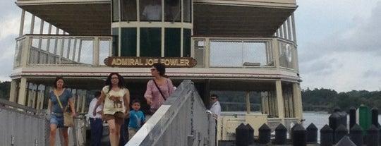Magic Kingdom Ferry is one of Walt Disney World.
