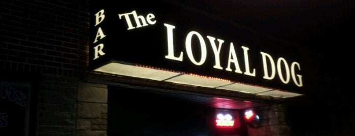 The Loyal Dog is one of Venues We've Visted.