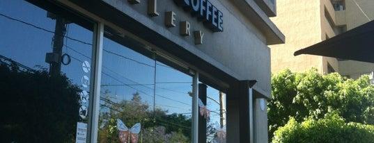 Black Coffee Gallery by Ismael Vargas is one of KFESSS.