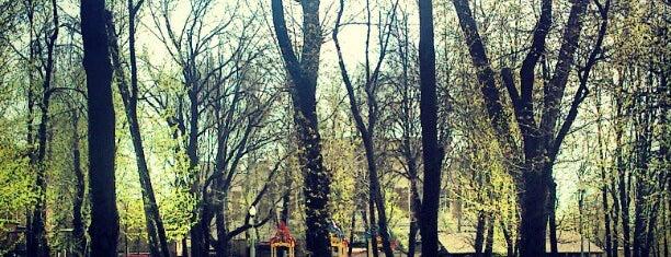 Парк им. 1 Мая is one of бауманка.
