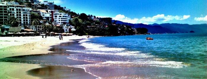 Playa de los Muertos is one of Andando en vallarta!.
