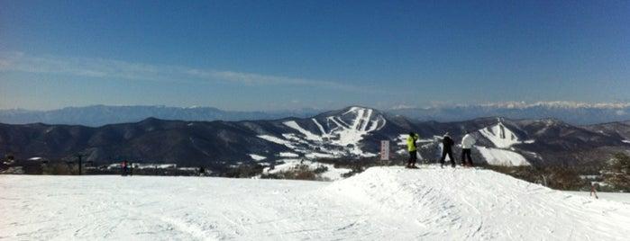 菅平高原スキー場 is one of スキー場.