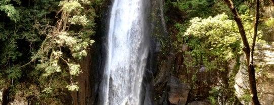 西椎屋の滝 is one of 日本の滝百選.