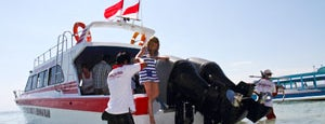 Rocky Fast Cruise Office is one of Transfer to Lembongan Island.