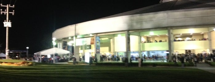 Arena VFG is one of Show Places @ GDL.