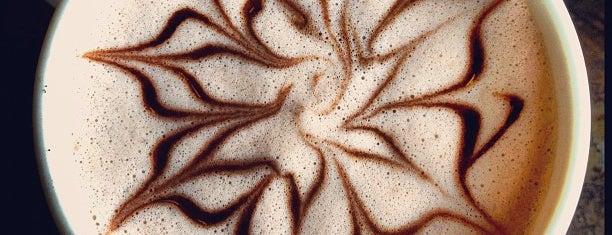 Best Hot Chocolate in Dallas