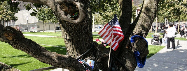 9/11 Survivor Tree is one of NYC Monuments & Parks.