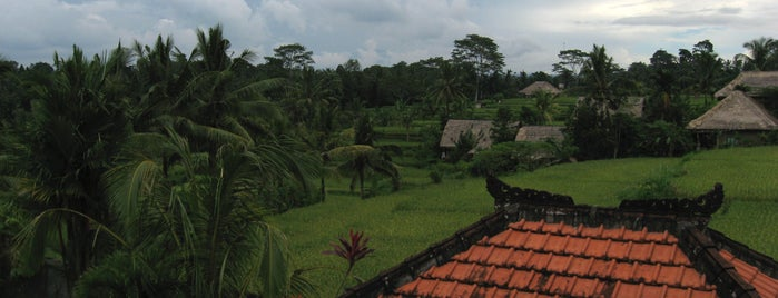 Ubud is one of Destination of the Day.