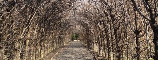 Snug Harbor Cultural Center & Botanical Garden is one of Park Highlights of NYC.