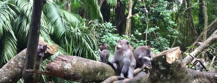 Sacred Monkey Forest Sanctuary is one of Bali for The World #4sqCities.