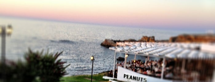 Eziç Peanuts is one of Girne.