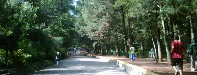 Bosque de Tlalpan is one of PTS - Around México City.