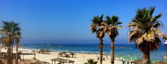 Gordon Beach is one of Travel Guide to Tel Aviv.