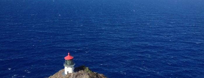 Makapu'u Lighthouse is one of さっしーのお気に入り.