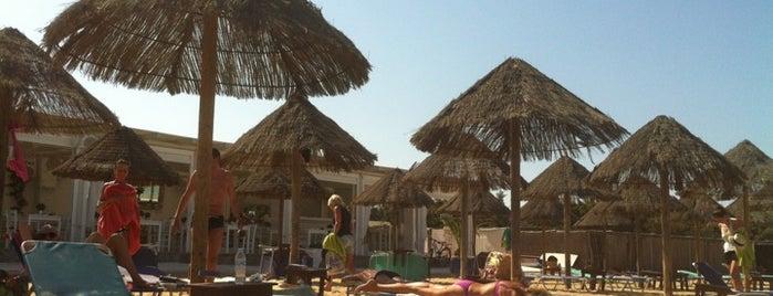 Santa Maria Beach is one of Paros Top.