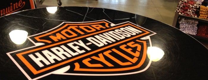 Autostar (Harley Davidson) is one of São Paulo.