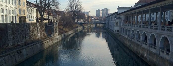 Ljubljana is one of Capitals of Europe.