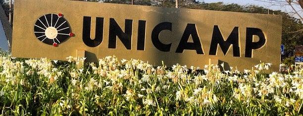 Universidade Estadual de Campinas (UNICAMP) is one of to go / go back.