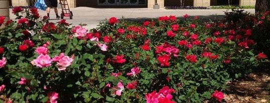 Abilene Christian University is one of Texas Higher Education.