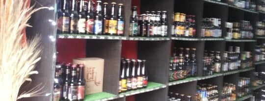 The Beer Company is one of Cerveza en el DF..