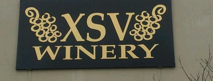 XSV Wines is one of Woodinville Wineries.