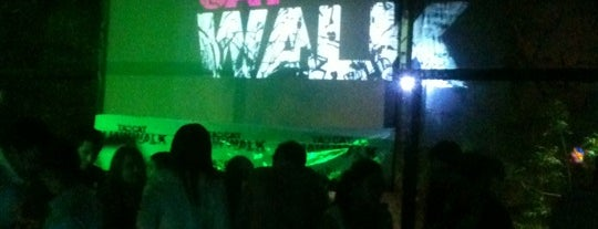 Catwalk Condesa is one of Algunos lugares....