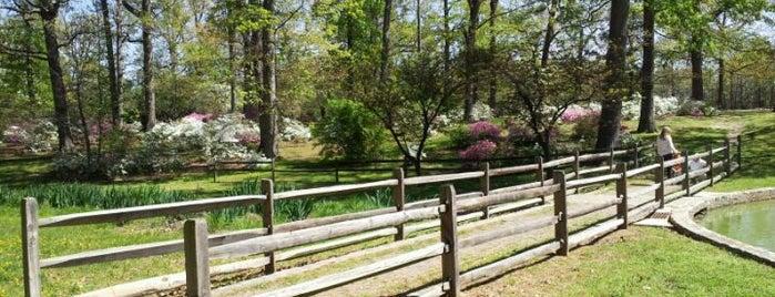Joseph Bryan Park is one of RVA parks.