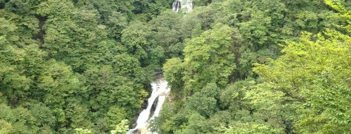 霧降の滝 is one of 日本の滝百選.