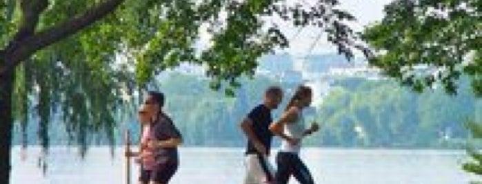 Alster-Laufstrecke | Alster Running Trail is one of Best sport places in Hamburg.