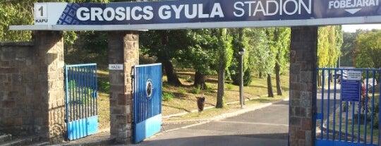 Grosics Gyula Stadion is one of Stadionok.