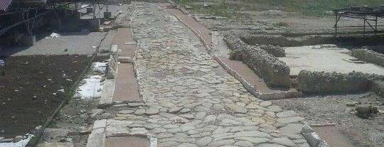 Città romana di Suasa is one of Tutto Castelleone di Suasa.