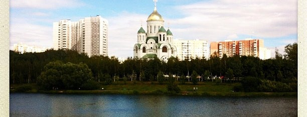 Большой Солнцевский пруд на Сетуньке is one of Москва.