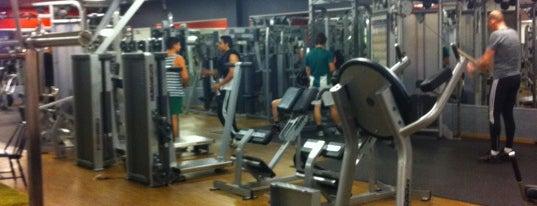 Friskis och Svettis (workout/gym) Stockholm