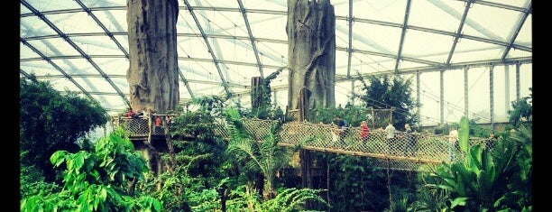Gondwanaland is one of Must visit places in Leipzig.