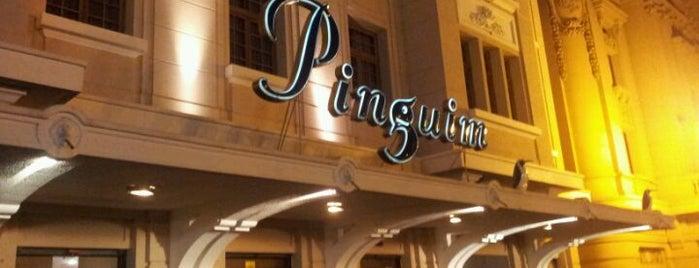 Pinguim is one of Conhecer Ribeirão.