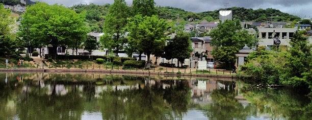 樋之池公園 is one of 公園.