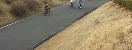 下総フレンドリーパーク is one of サイクリング.