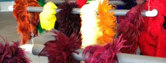 Rainbow Feather Dyeing Company is one of Quirky Vegas.