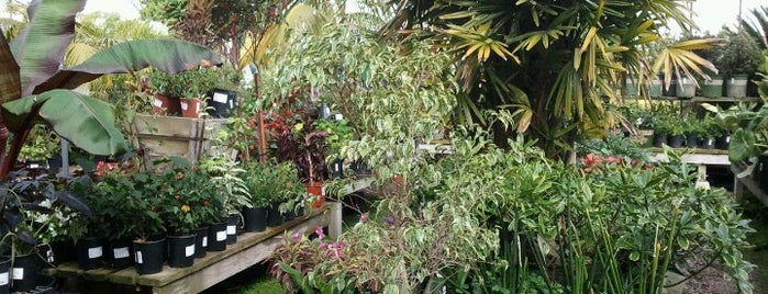 Walter Andersen Nursery Is One Of The 15 Best Places With Gardens In San  Diego.